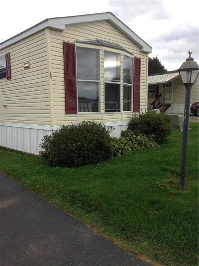Allegany Single Family Home A-Active: 4115 South Nine Mile #128