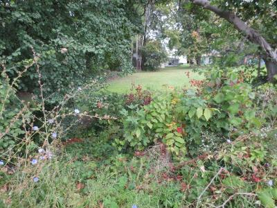 Residential Lots & Land A-Active: V/L James Street