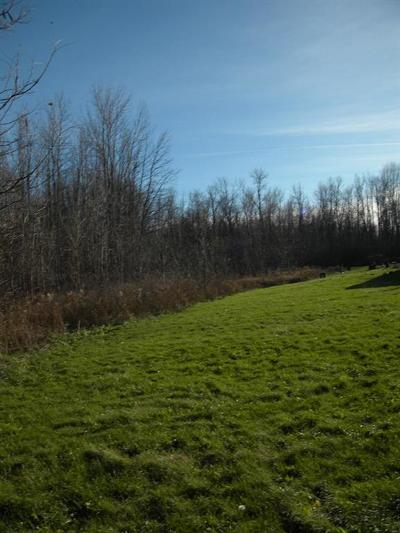 Residential Lots & Land A-Active: 746 & 744 State Route 318