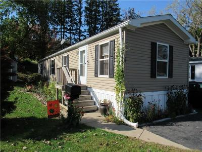 Penfield Single Family Home A-Active: 29 Gennis Drive