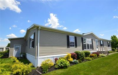Victor Single Family Home A-Active: 978 Gypsum Mills Road