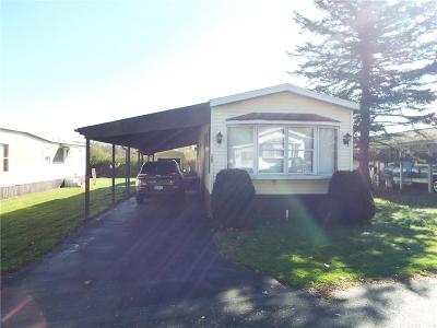 Allegany Single Family Home A-Active: 3974 Rt 417