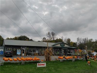 Ontario NY Commercial A-Active: $375,000