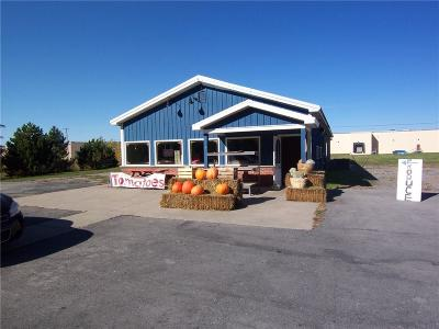Commercial A-Active: 8282 Park Road