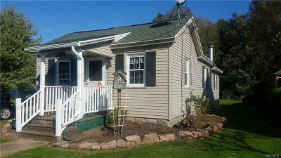 Albion Single Family Home A-Active: 121 Knapp Street