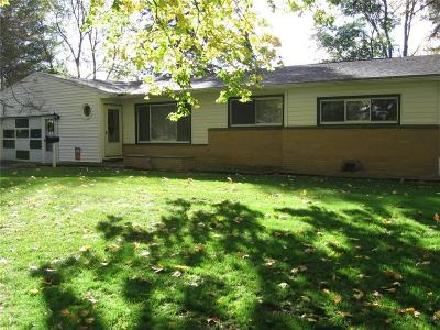 Livingston County Single Family Home A-Active: 259 Spring Street