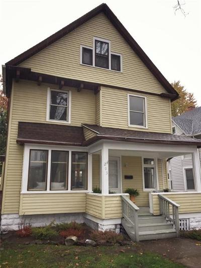 Rochester Single Family Home A-Active: 203 Pearl Street