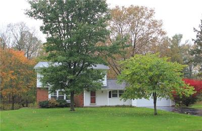Penfield Single Family Home A-Active: 219 Timber Brook Lane
