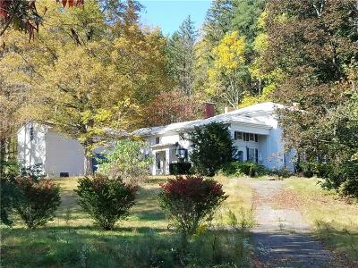 Single Family Home C-Continue Show: 8704 Dansville Mount Morris Road
