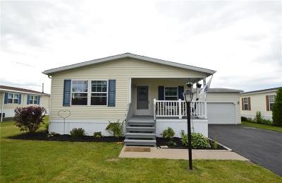 Victor Single Family Home A-Active: 6288 Lambert Street