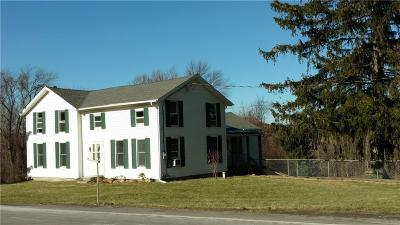 Allegany County, Genesee County, Livingston County, Ontario County, Steuben County, Wyoming County, Yates County Single Family Home A-Active: 4133 State Route 436