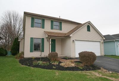 Henrietta Single Family Home A-Active: 16 Elk River Road