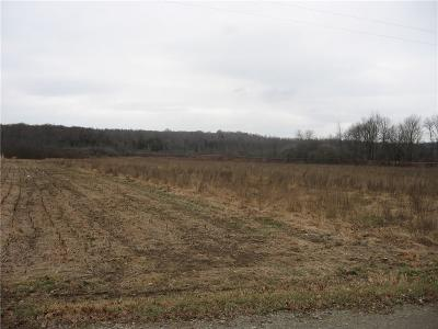 Chautauqua County Residential Lots & Land A-Active: Dean Road
