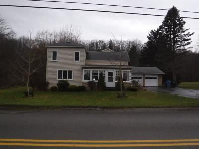 Chautauqua County Single Family Home A-Active: 10553 Creek Road