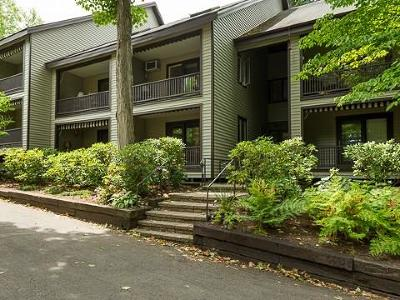 Chautauqua Institution Condo/Townhouse A-Active: 9 Morris Avenue #4