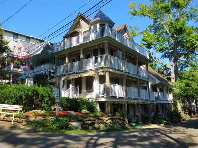 Chautauqua Institution Multi Family 2-4 A-Active: 4 Vincent