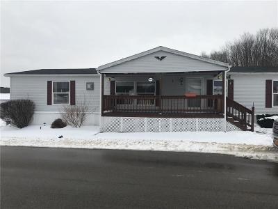 Allegany Single Family Home A-Active: 4115 South 9 Mile Rd #192