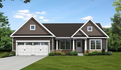 Williamson Single Family Home A-Active: 7198 Salmon Creek Road
