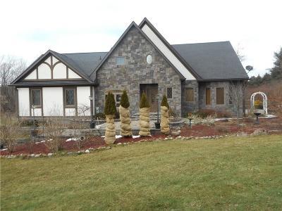Monroe County Single Family Home A-Active: 40 Honeoye Falls Five Pt Road