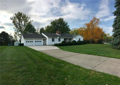Albion Single Family Home A-Active: 49 Meadowbrook Drive