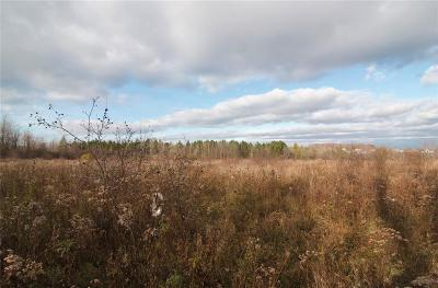 Ontario County Residential Lots & Land A-Active: Silvernail Drive