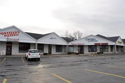 Monroe County Commercial A-Active: 785 Spencerport Road
