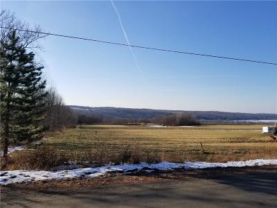 Conesus NY Residential Lots & Land A-Active: $29,900