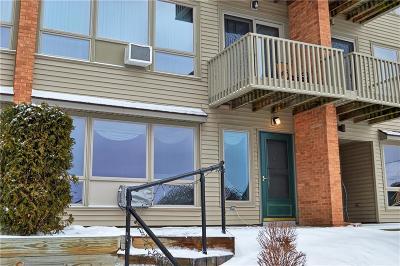 Chautauqua NY Condo/Townhouse A-Active: $78,500