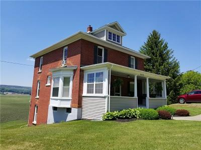 Dansville Single Family Home A-Active: 8449 State Route 36