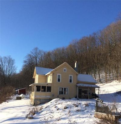 Springwater NY Single Family Home C-Continue Show: $93,999