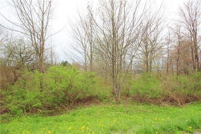 Residential Lots & Land A-Active: Ellery-Centralia Road