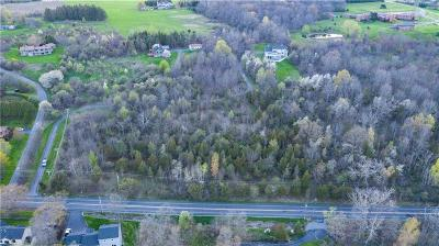 Canandaigua NY Residential Lots & Land A-Active: $64,900