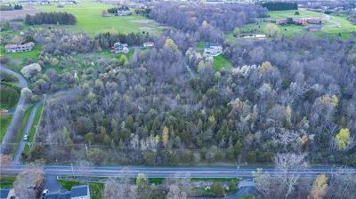 Canandaigua NY Residential Lots & Land A-Active: $69,900