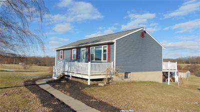 Springport NY Single Family Home A-Active: $185,000