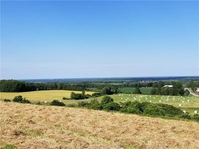 Genesee County Residential Lots & Land A-Active: 11137 Buckman Road
