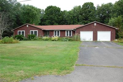 Ellicott NY Single Family Home A-Active: $195,000