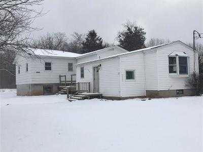 Orleans County Single Family Home A-Active: 2263 Center Road
