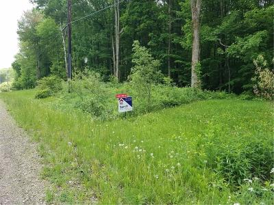 Chautauqua County Residential Lots & Land A-Active: 4157 Salisbury Road
