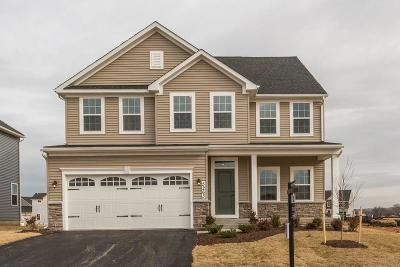 Single Family Home A-Active: 709 Hillspring Terrace