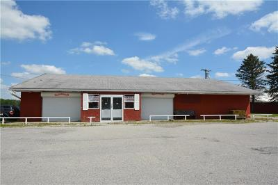 Commercial A-Active: 7451 South Lake Road