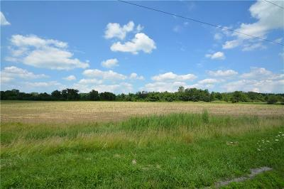 Genesee County Residential Lots & Land A-Active: South Lake Road