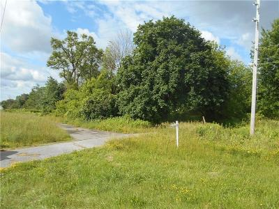 Riga Residential Lots & Land A-Active: 329 Sanford Road North