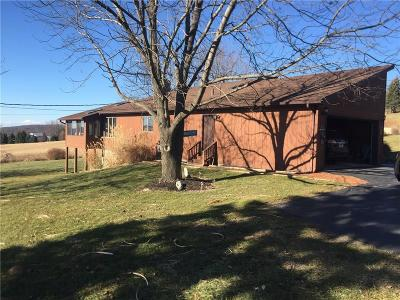 Single Family Home A-Active: 8982 Reeds Corners Road