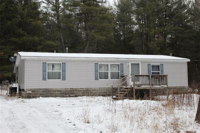 Allegany County, Genesee County, Livingston County, Ontario County, Steuben County, Wyoming County, Yates County Single Family Home A-Active: 5453 Bill Allen Hill Road