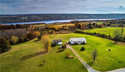 Allegany County, Genesee County, Livingston County, Ontario County, Steuben County, Wyoming County, Yates County Single Family Home A-Active: 9844 County Route 76