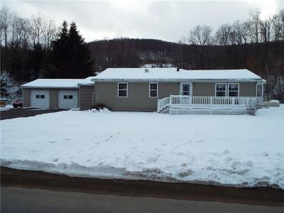 Hinsdale NY Single Family Home A-Active: $97,500