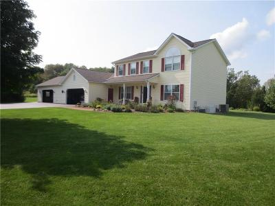 Allegany County, Genesee County, Livingston County, Ontario County, Steuben County, Wyoming County, Yates County Single Family Home A-Active: 2582 Bronson Hill Road