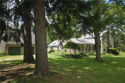 Single Family Home Sold: 1669 Big Tree Road