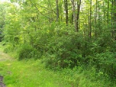 Chautauqua County Residential Lots & Land A-Active: Hunt Road
