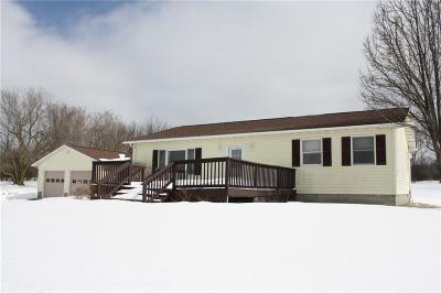 Livingston County Single Family Home A-Active: 4680 Lima Road